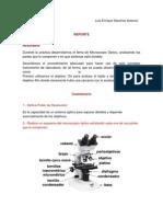 Reporte de Embriología.docx