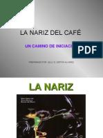 La Nariz Del CafÉ Taller