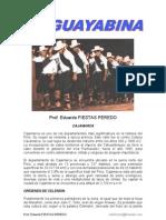 DANZA GUAYABINA.pdf