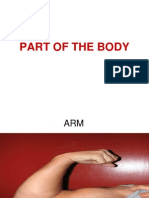 PW part of the body