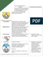 Guide to Brain Anatomy
