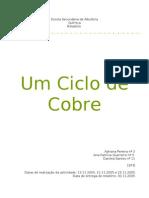 Quimica 12 Ciclo Cobre AdrianaPereira AnaPatricia DanielaSantos