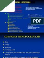 Caracterización Lesión focal hepática