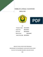 Invertebrate Animal Taxonomy