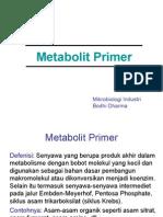 Metabolit Primer