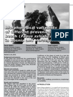 Morphological variability of different provenience of beech (Fagus sylvatica L.) in Bosnia and Herzegovina