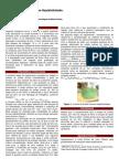 Q.I. Relatório da Síntese do Sulfato Ferroso