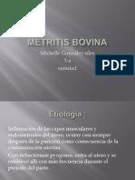 Metritis Bovina Michelle Gonzalez Sile 3-A