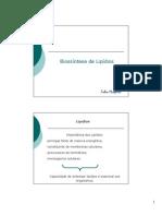 Aula - biossintese de lipídios - Fabio