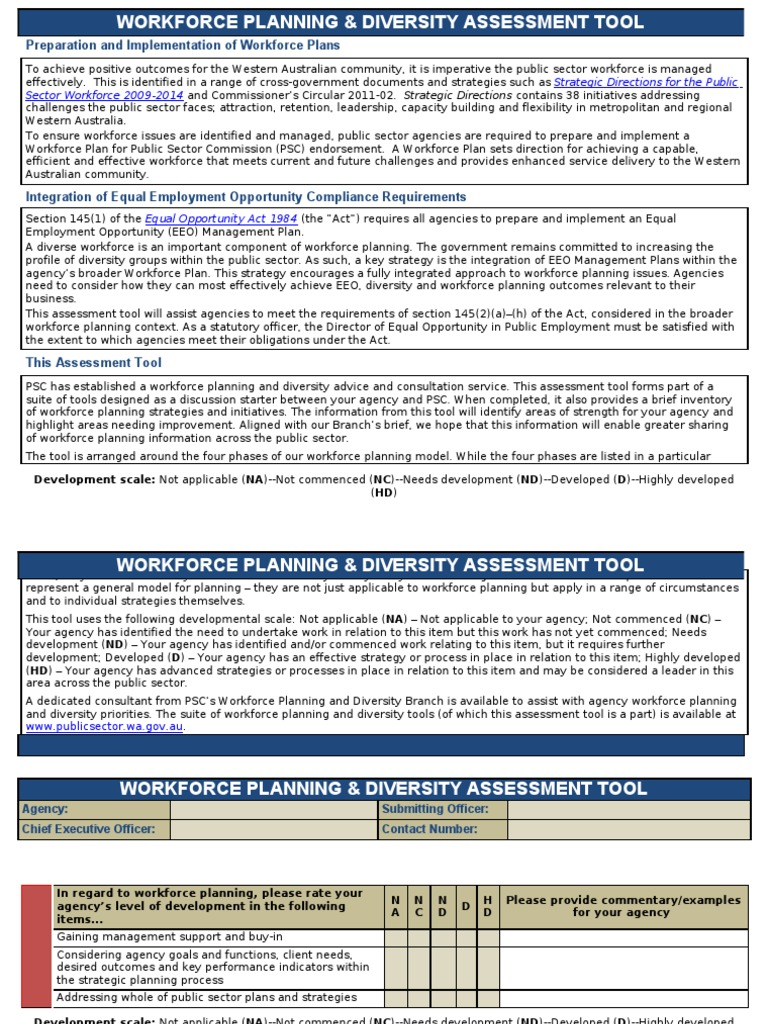 Workforce Planning and Diversity Assessment Tool | Diversity