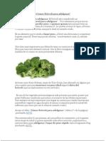 Comer Brócoli para adelgazar