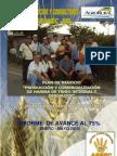 Informe de Avance Al 75% de Harina Intetral