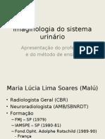 Sist Urinario UFAL6P20091