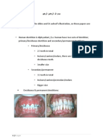 Dental Anatomy # 1