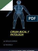 Cirujia Bucal Doctor Laturnairie
