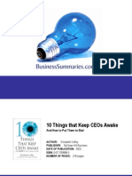 10 Things That Keeps CEOs Awake BIZ