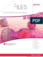 Cancer Origins and Carcinogenesis - BioFiles Issue 3.5