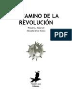 El camino de la revolución
