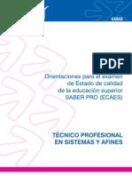 Guia Tecnico Profesional Sistemas