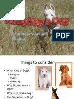 Lab 7-3 Dog