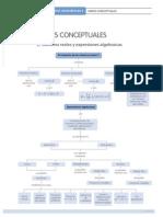 Mapa Conceptual Unidad 1 Reales