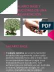 Salario Base y Retribuciones de Una Organizacion (1)