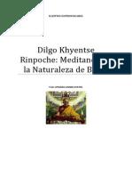 Dilgo Khyentse Rinpoche Meditando en La Naturaleza de Buda