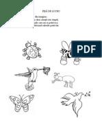 0_0_insecte.doc