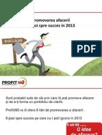 Promovarea Afacerii - Idei Pentru 2013