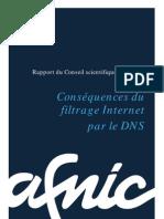 CS Consequences Du Filtrage Internet Par Le DNS