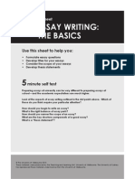 Writing Essay the Basics