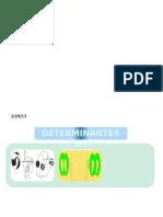 Presentación final .pptx