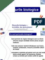 Riscuri BIOLOGICE.pdf