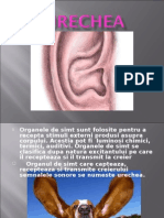 Urechea