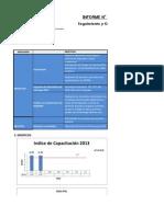 Informe N° 02 Febrero Objetivos 2013