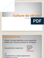 Aula biomed -Cultura de células II- Turma 2012-1