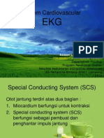 4. Presentasi Ekg