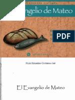 Cisterna_ Felix Eduardo - El Evangelio de Mateo
