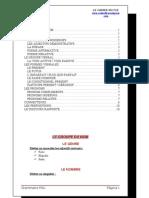 grammaire_pau.doc
