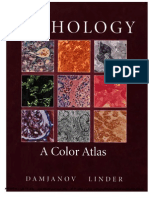 Color Atlas of Pathology
