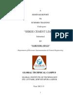 Shree Cement Beawar Report