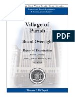 Village of Parish audit