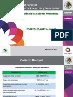MDF_12_Tala Ilegal en Mexico, Contexto - Ignacio Gonzalez, CONAFOR_0