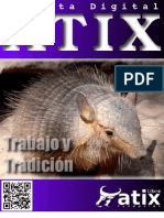 atix21-130218102528-phpapp02