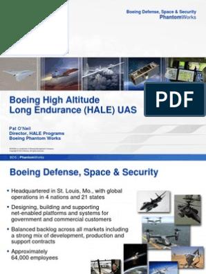 HALE pdf | Aerospace Engineering | Industries