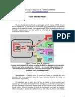 Curso de Proxy.pdf