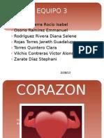 Sx Corazon