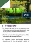 Apres Pantanal