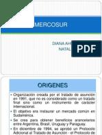 EXPOSICION DEFINITIVA MERCOSUR.ppt