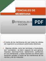 Capitulo 5-Potenciales de Membrana_potenciales de Accion